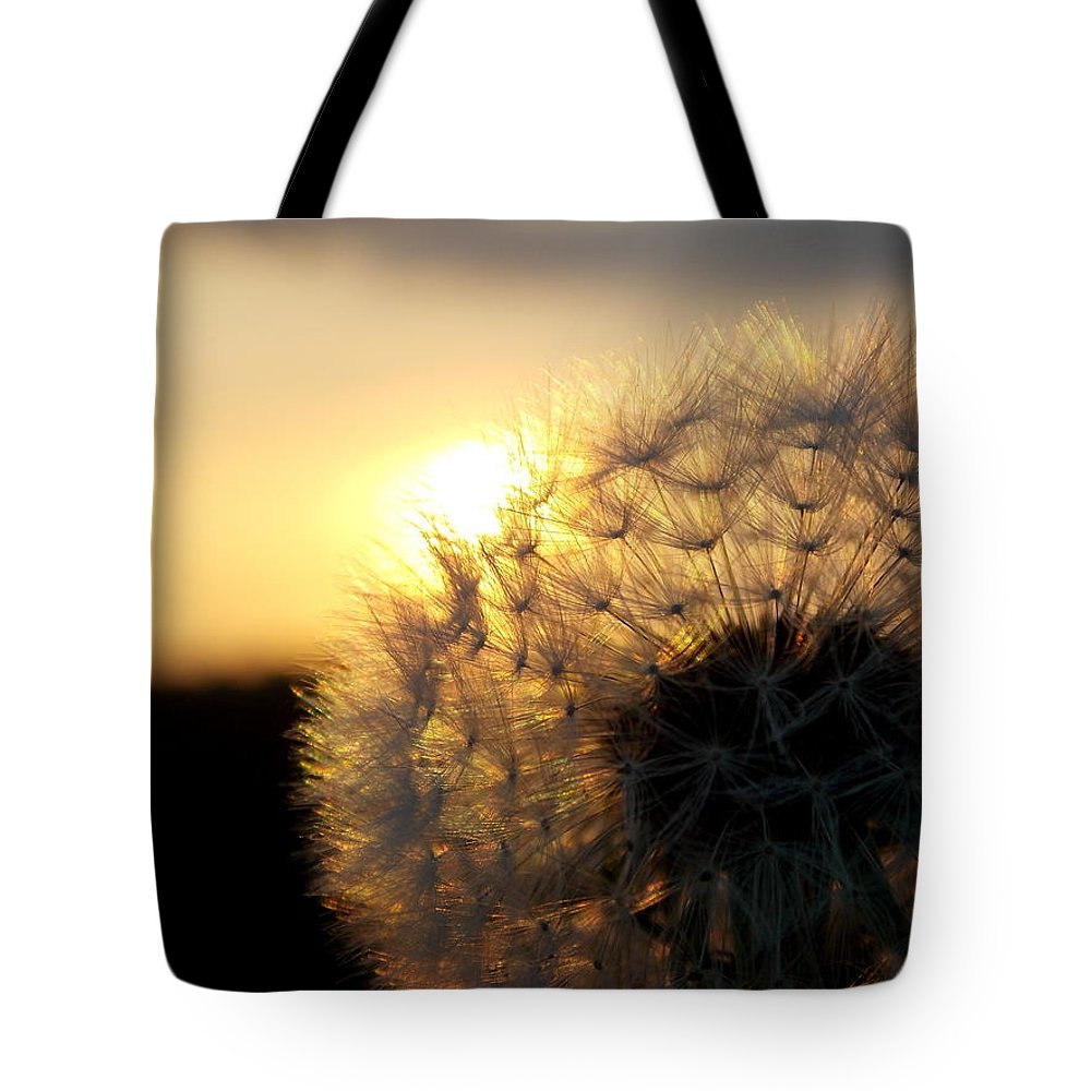 Dandelion Tote Bag featuring the photograph Dandelion Sunset by Chris Cox