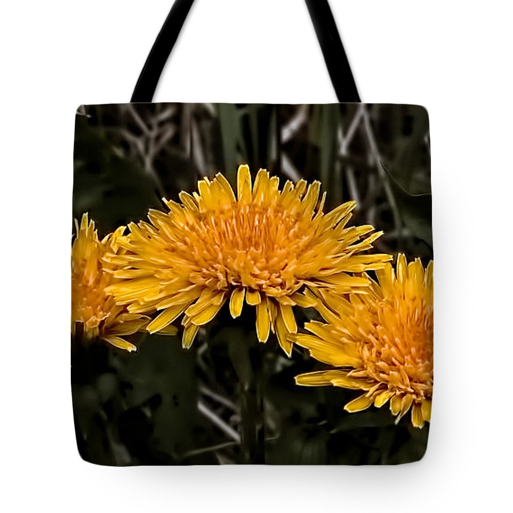 Group Tote Bag featuring the photograph Dandelions In Group By Leif Sohlman by Leif Sohlman