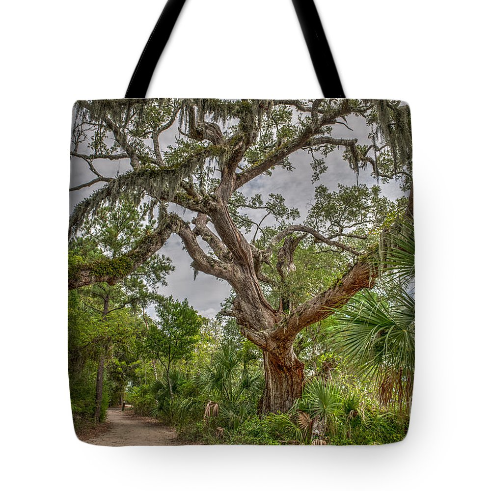 Daniel Island Tote Bag featuring the photograph Daniel Island Live Oak Tree by Dale Powell