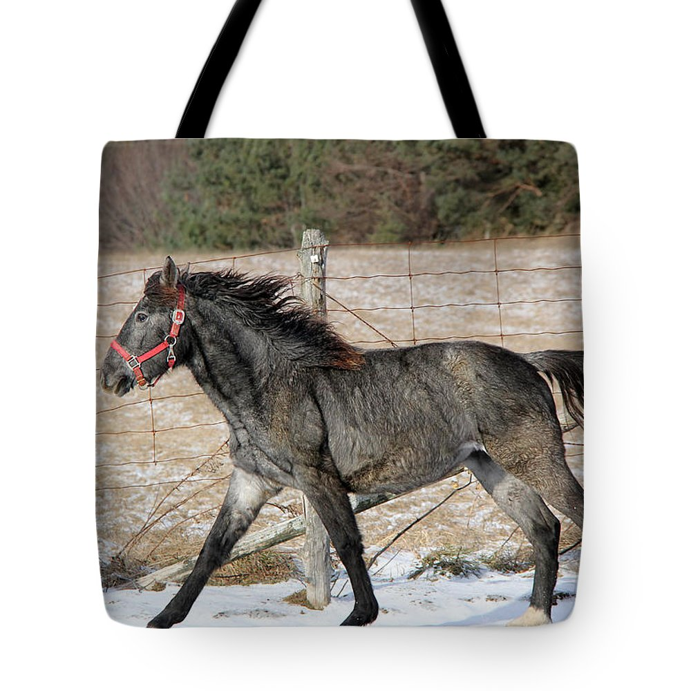 Animal Tote Bag featuring the photograph Dante by Davandra Cribbie