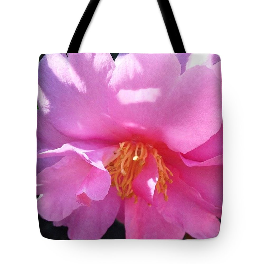 Dappled Sunlight On Pink Camelia Tote Bag featuring the photograph Dappled Sunlight on Pink Camellia by Anna Porter