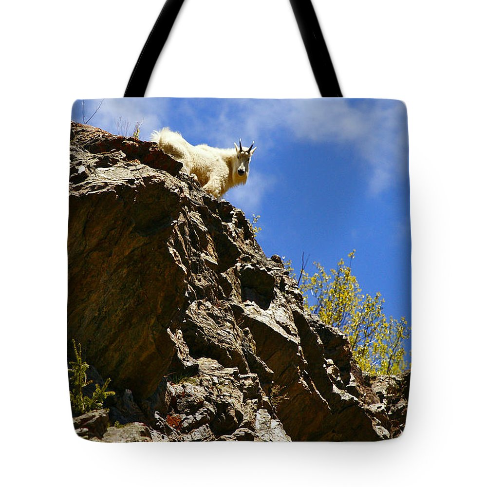 Altitude10k Photography Tote Bag featuring the photograph Dare To Climb by Jeremy Rhoades