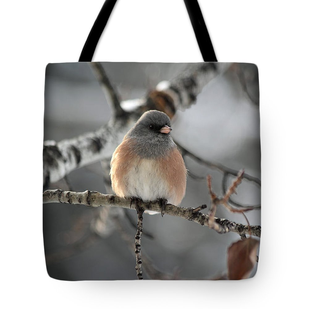 Dark-eyed Junco Tote Bag featuring the photograph Dark-eyed Junco by Shane Bechler