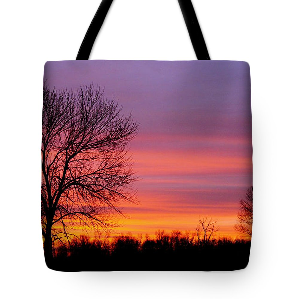 Bill Pevlor Tote Bag featuring the photograph Day's End Elm by Bill Pevlor