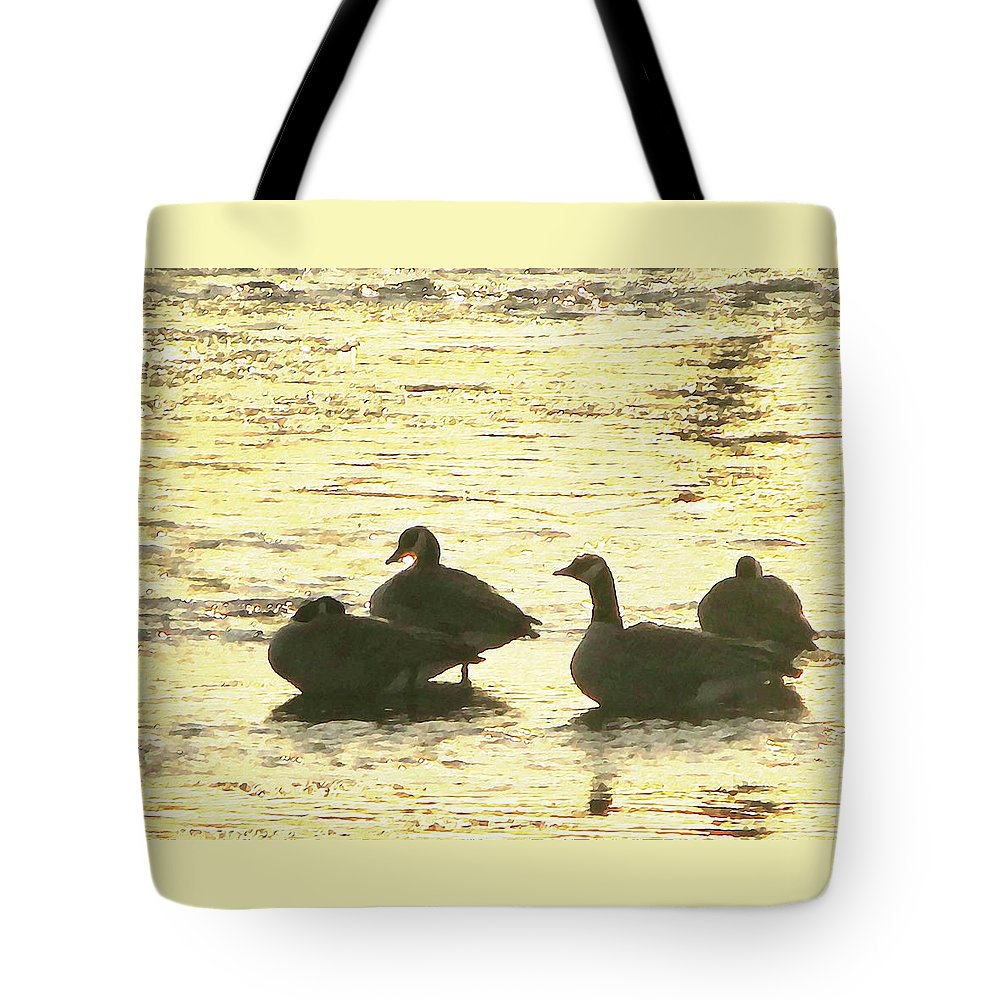 Geese Tote Bag featuring the painting Days Love by Robert Nacke