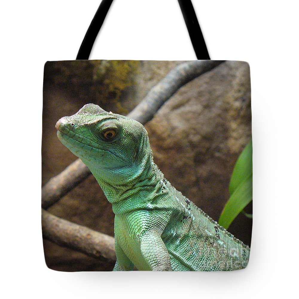 Reptile Tote Bag featuring the photograph Dazed And Confused by Lingfai Leung