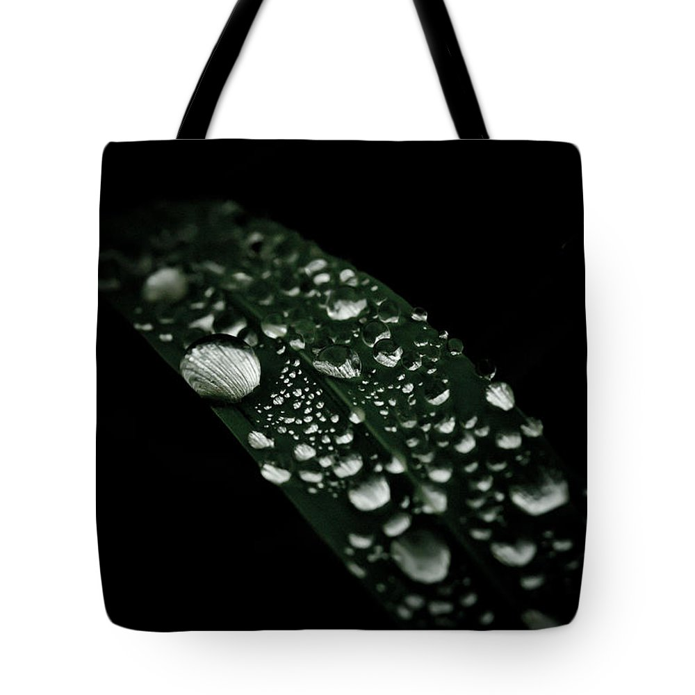 Droplets Tote Bag featuring the photograph Dazzlin' by Shane Holsclaw