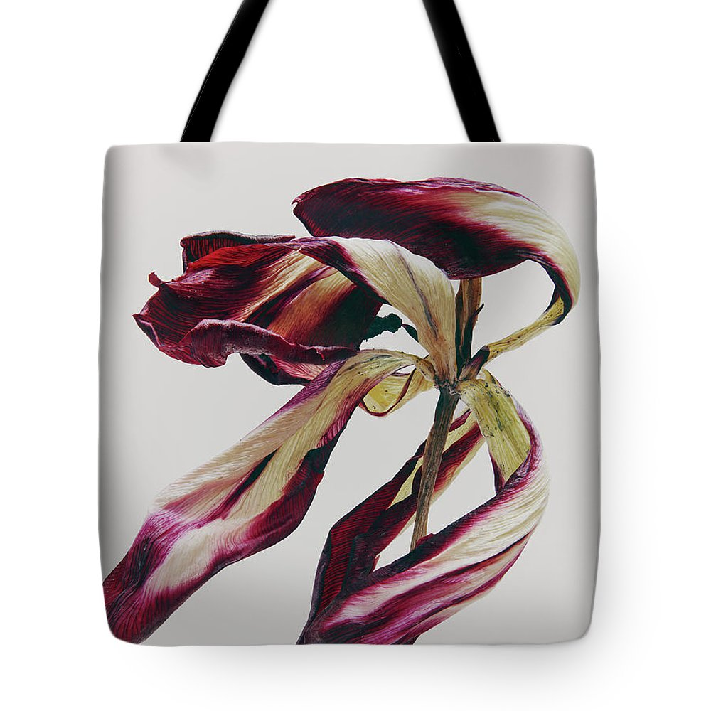 White Background Tote Bag featuring the photograph Dead Flower by Stilllifephotographer