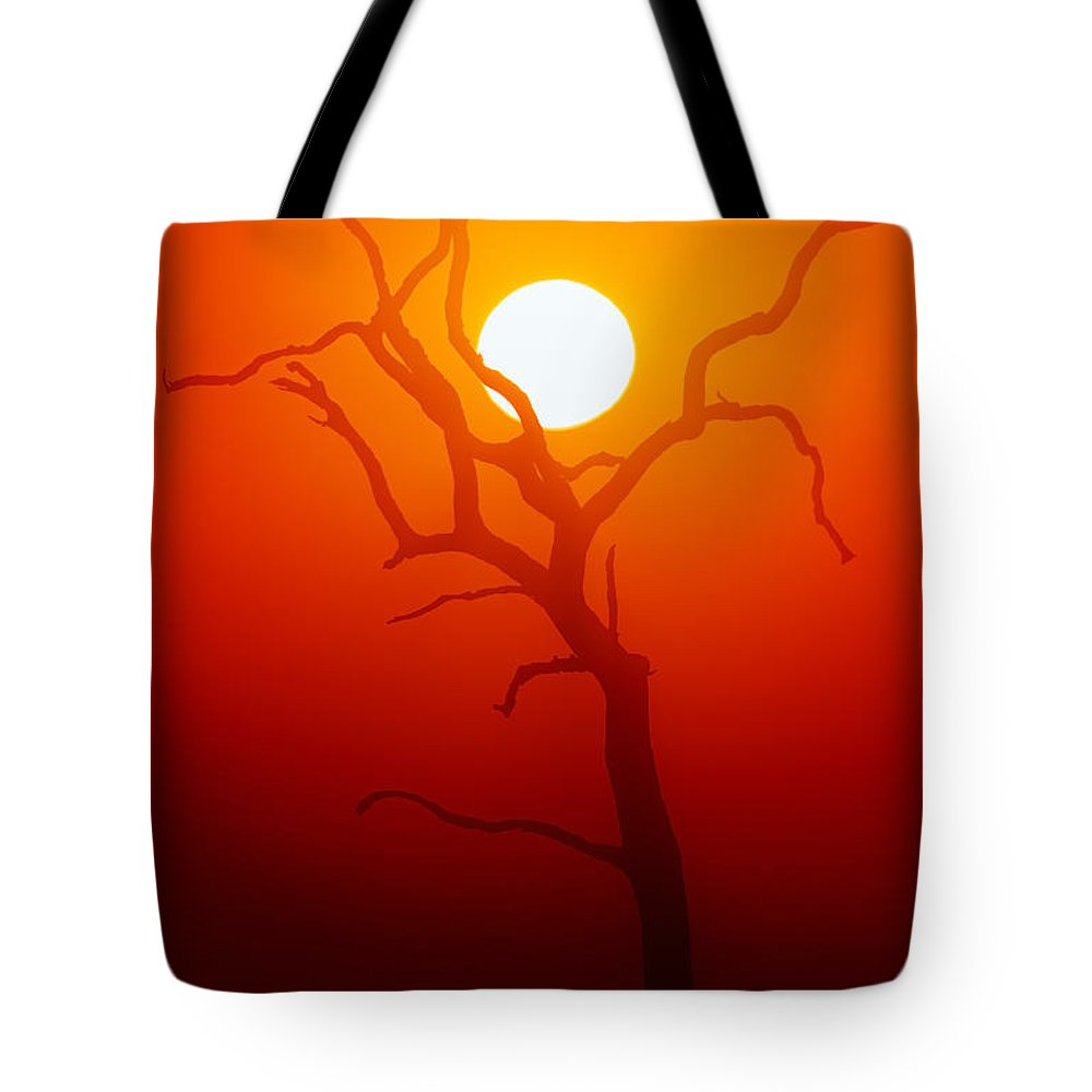 Tree Tote Bag featuring the photograph Dead Tree Silhouette And Glowing Sun by Johan Swanepoel