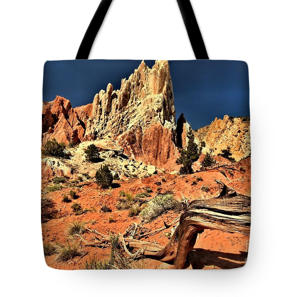 Cottonwood Road Tote Bag featuring the photograph Dead Trees In A Rainbow Desert by Adam Jewell
