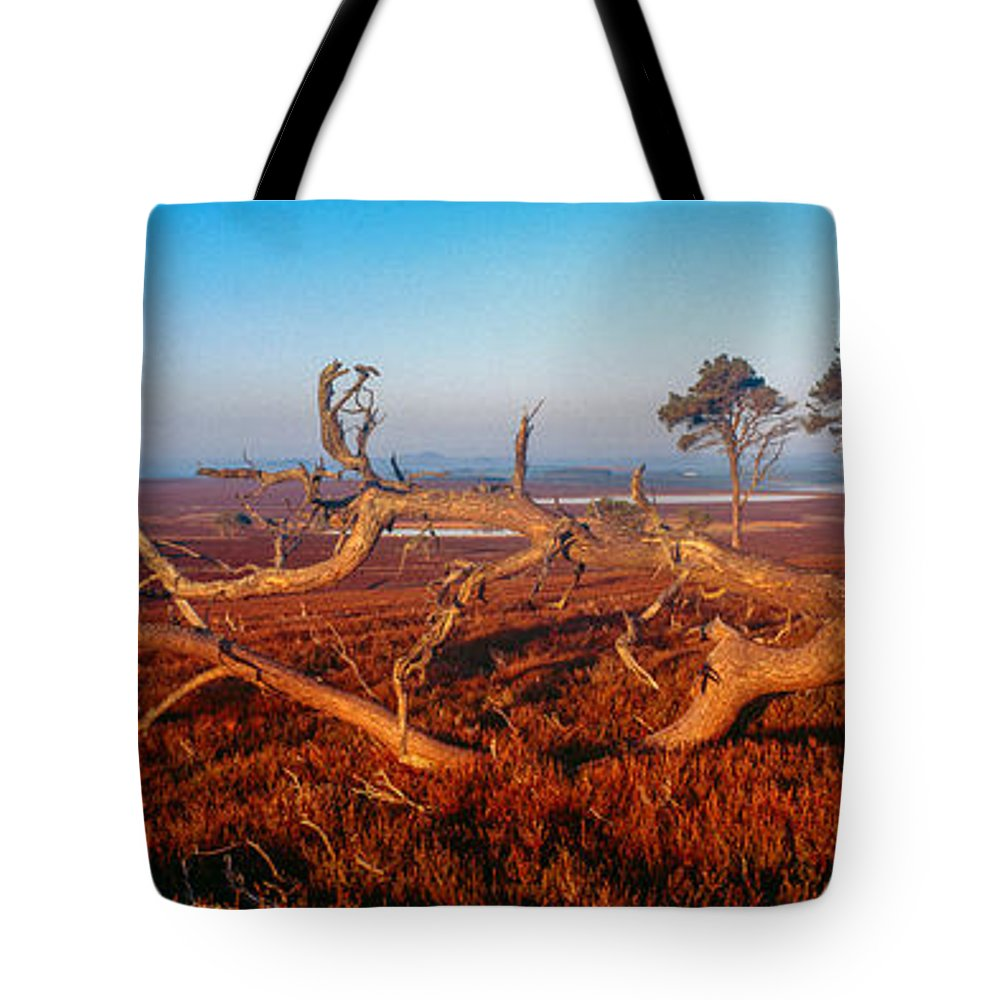 Photography Tote Bag featuring the photograph Dead Trees, Southern Uplands by Panoramic Images