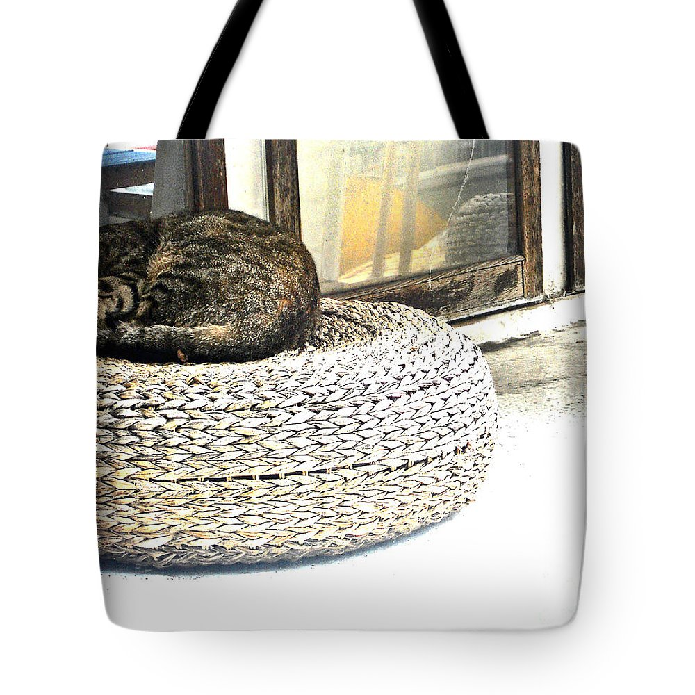 Abstract Tote Bag featuring the photograph Deck Cat by Lauren Leigh Hunter Fine Art Photography