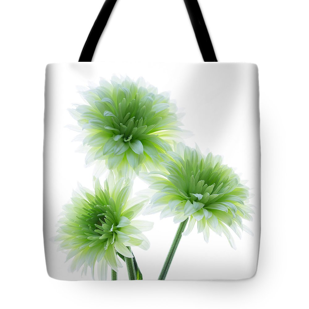 Flower Tote Bag featuring the photograph Deep In The Roots All Flowers Keep The Light by Kim Aston