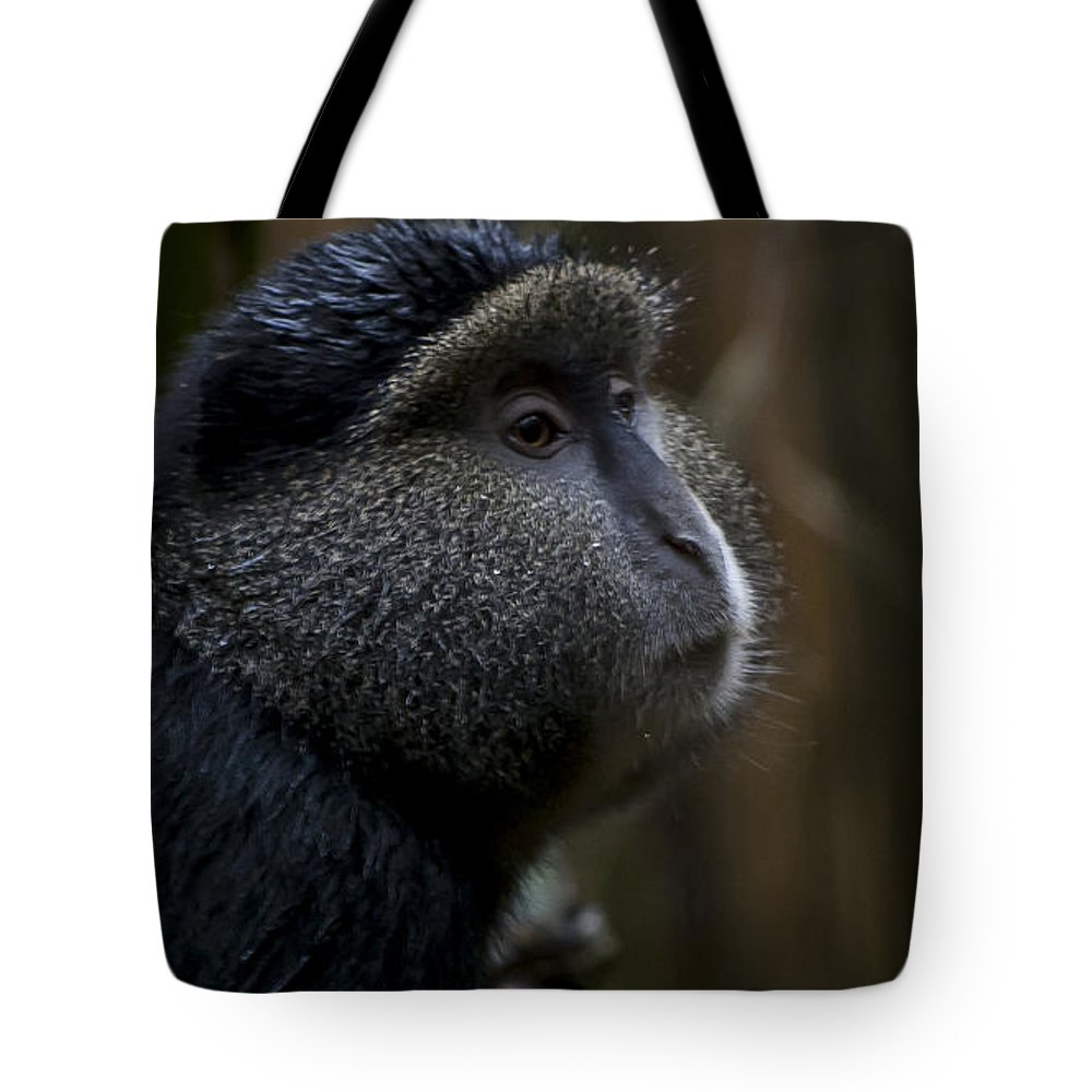 Rwanda Tote Bag featuring the photograph Deep In Thought by Paul Weaver