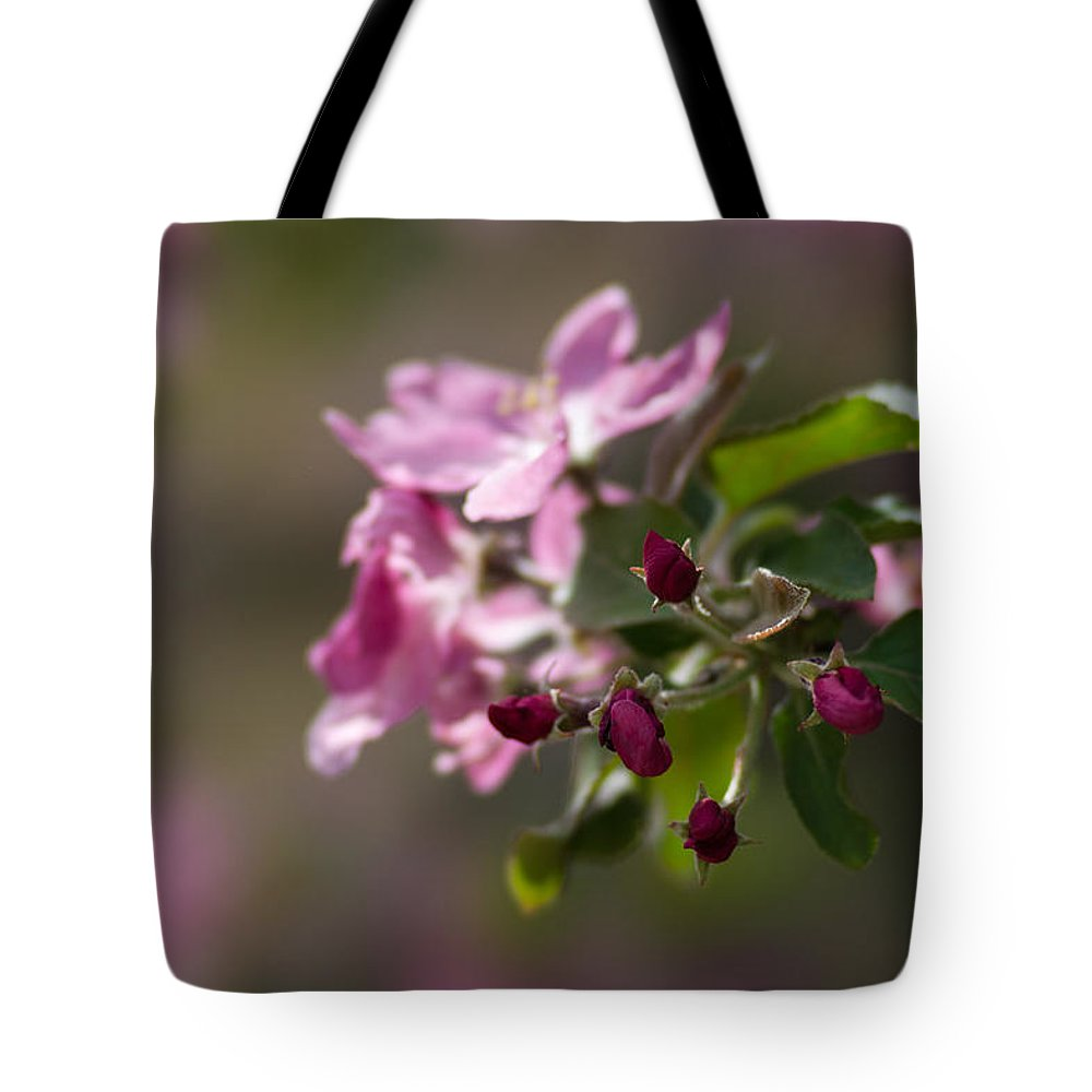 Flower Tote Bag featuring the photograph Deep Purple - Featured 3 by Alexander Senin