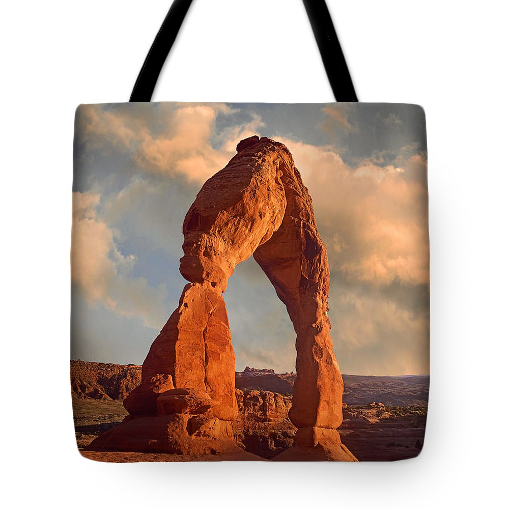 Arch Tote Bag featuring the photograph Delicate Arch In Arches National Park by Tim Fitzharris