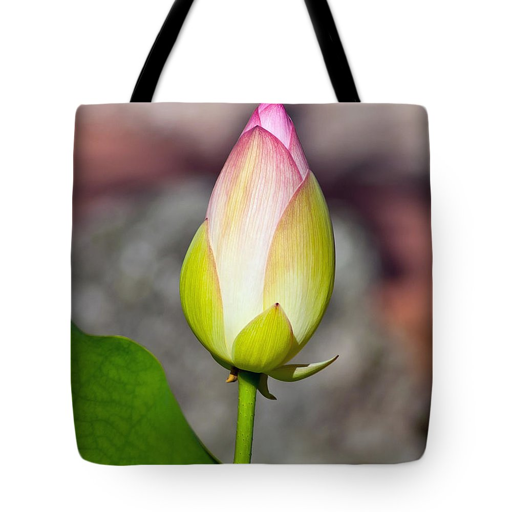 Bud Tote Bag featuring the photograph Delicate Bud by Stephen Whalen
