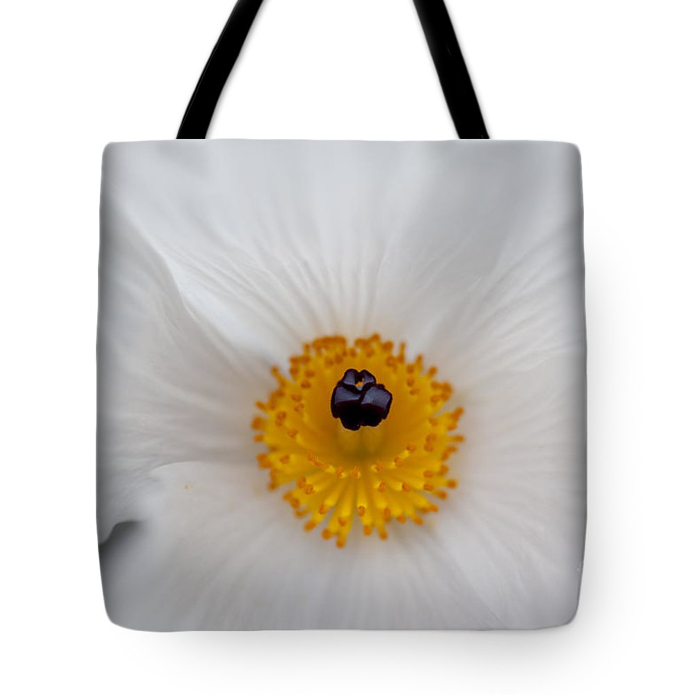 Hawaii Tote Bag featuring the photograph Delicate by Charmian Vistaunet