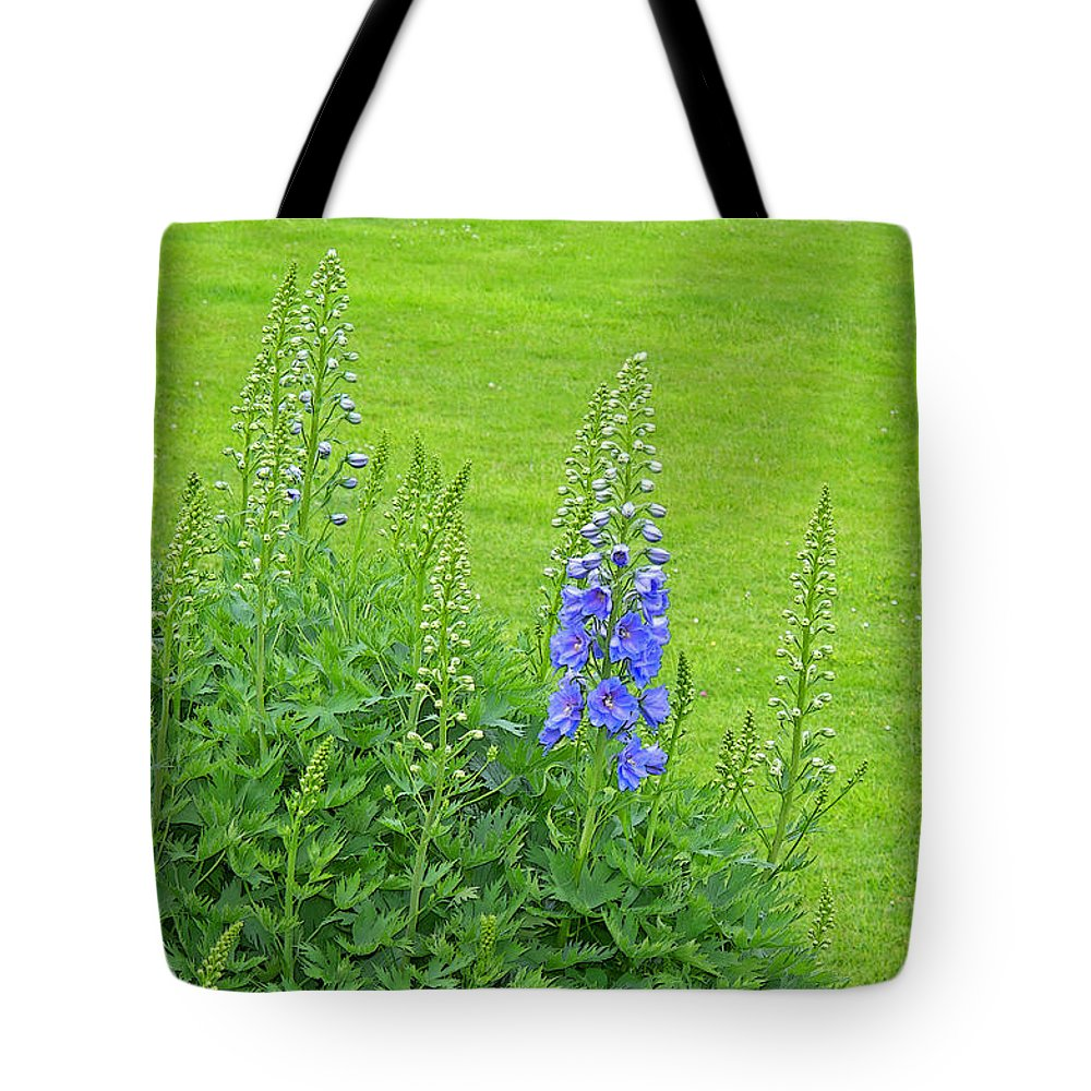 Delphinium Tote Bag featuring the photograph Delphinium by Ann Horn