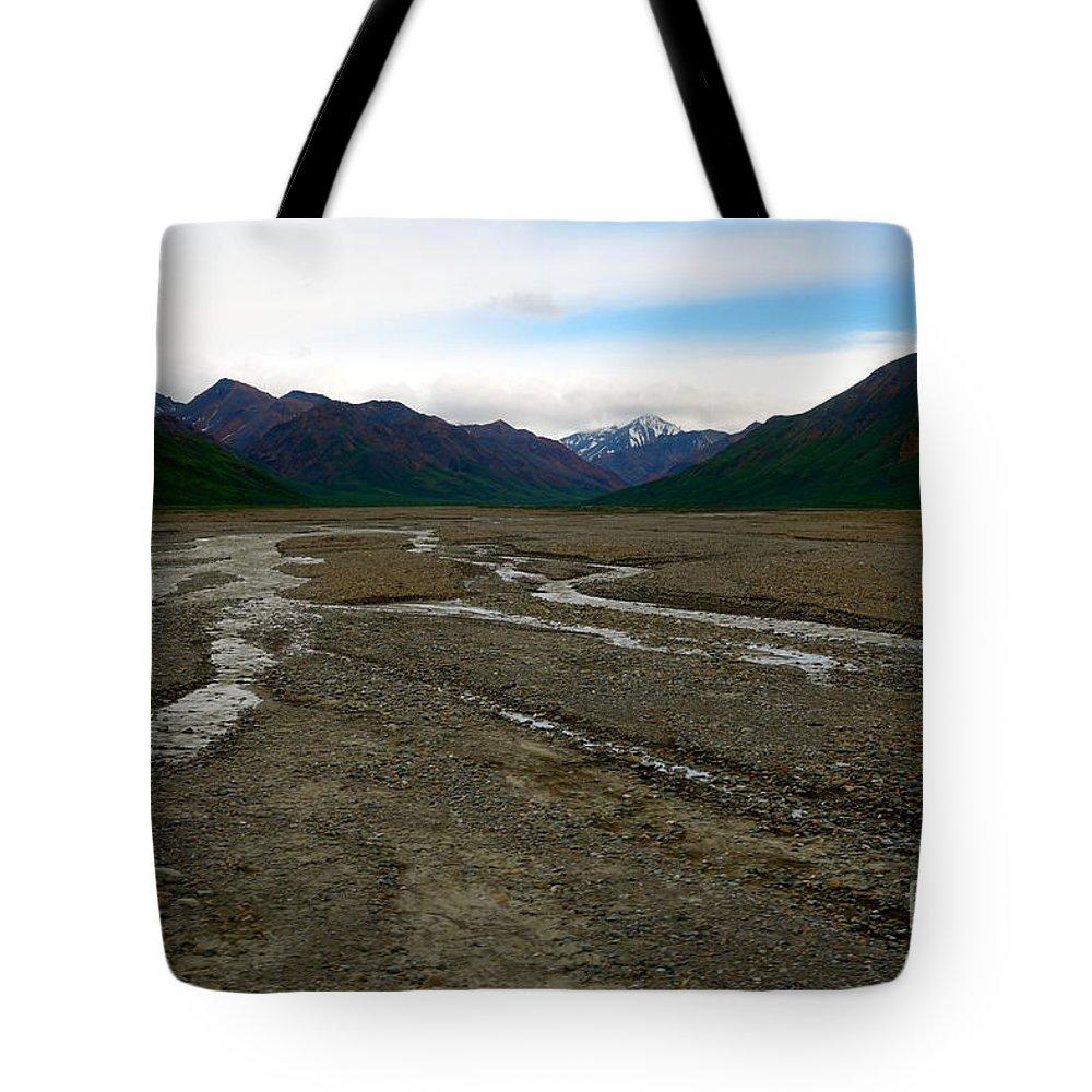 Denali National Park Tote Bag featuring the photograph Denali National Park 3 by Jacqueline Athmann