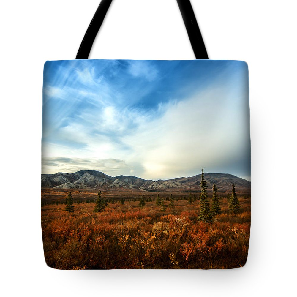Denali Tote Bag featuring the photograph Denali National Park by Lauri Novak