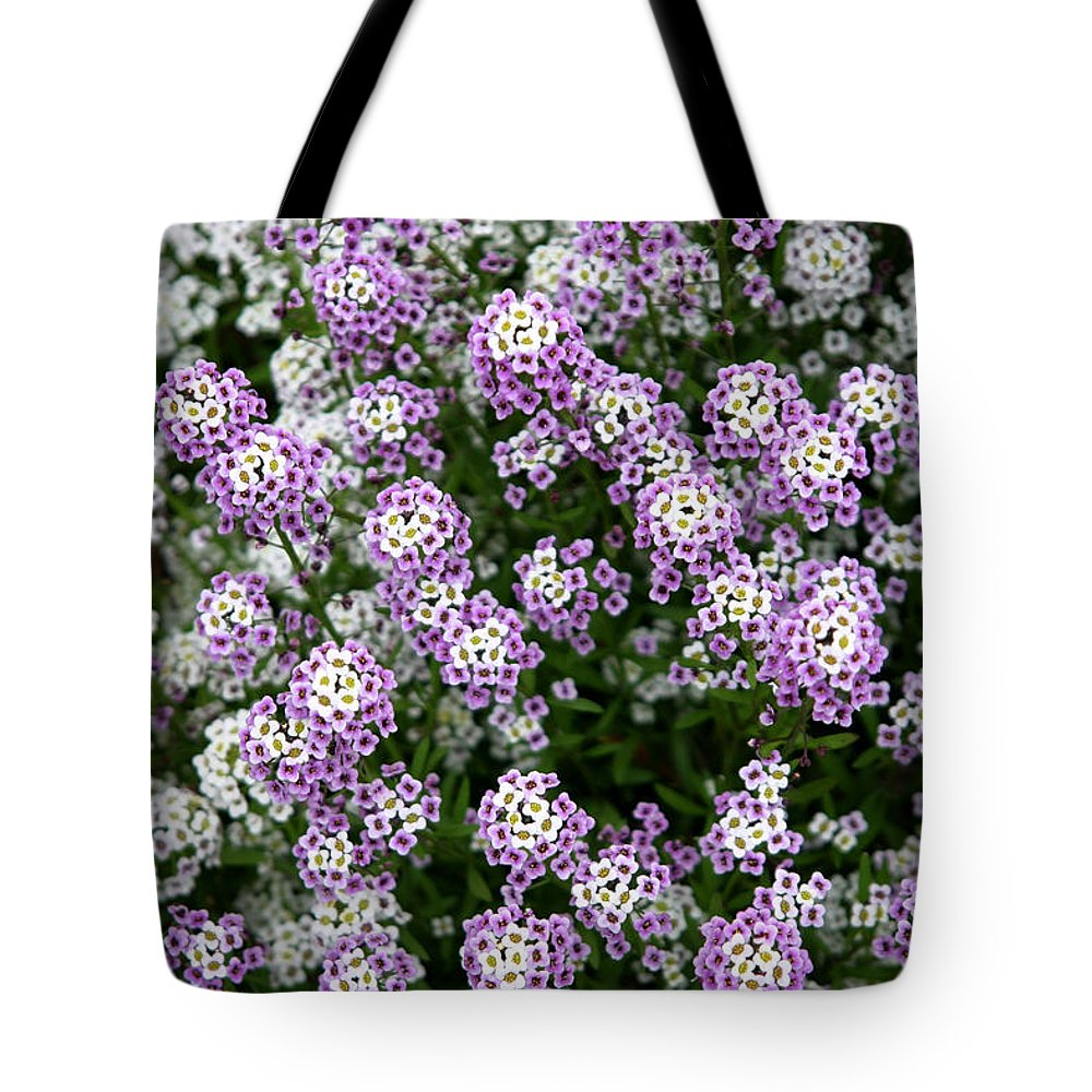 Flowers Tote Bag featuring the photograph Descanso Gardens 11 by Kathy Hutchins