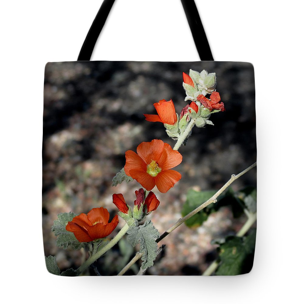 Plant Tote Bag featuring the photograph Desert Flowers by Laurel Powell