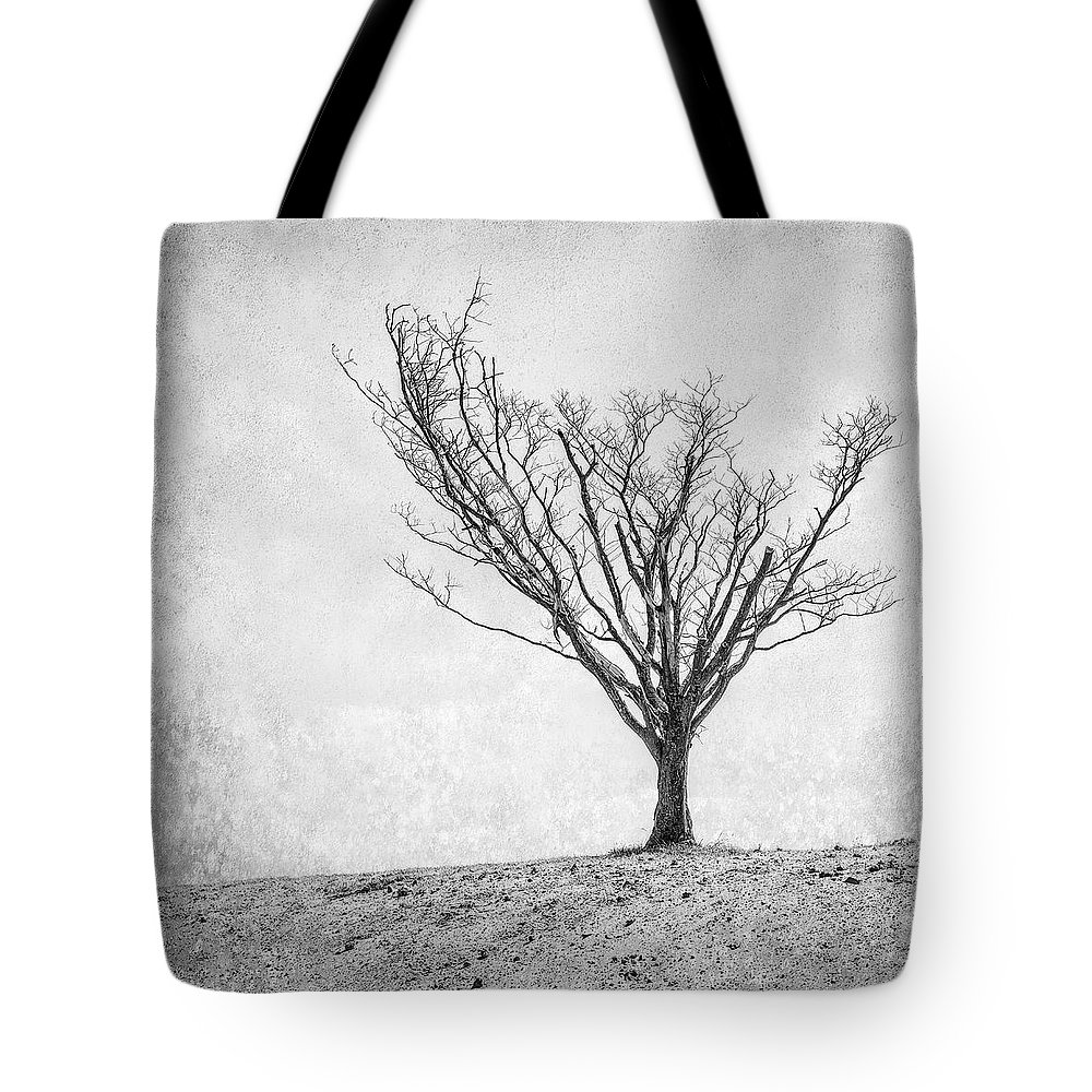 Landscape Photography Tote Bag featuring the photograph Desperate Reach by Scott Norris