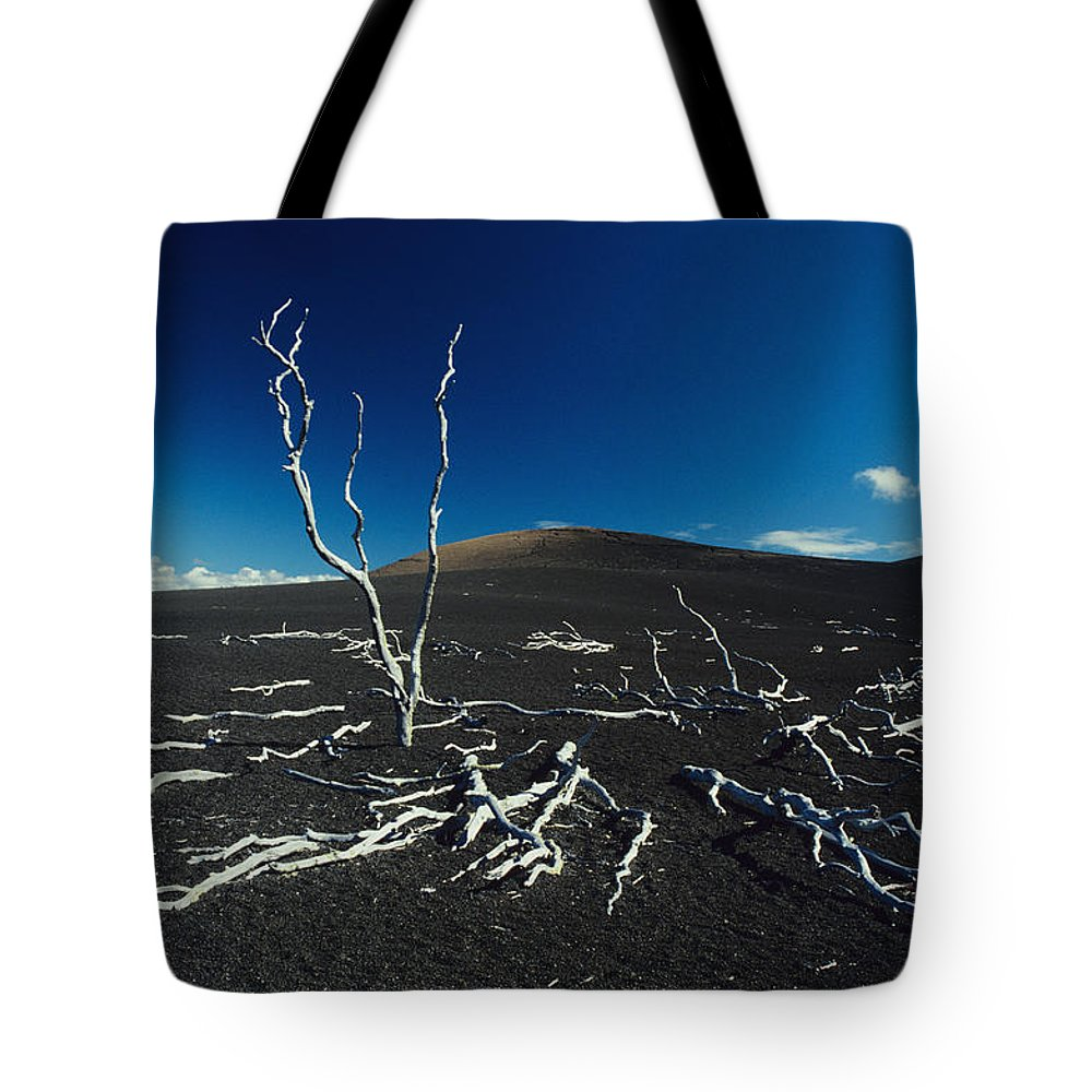 01-csm0018 Tote Bag featuring the photograph Devastation Trail by Ali ONeal - Printscapes