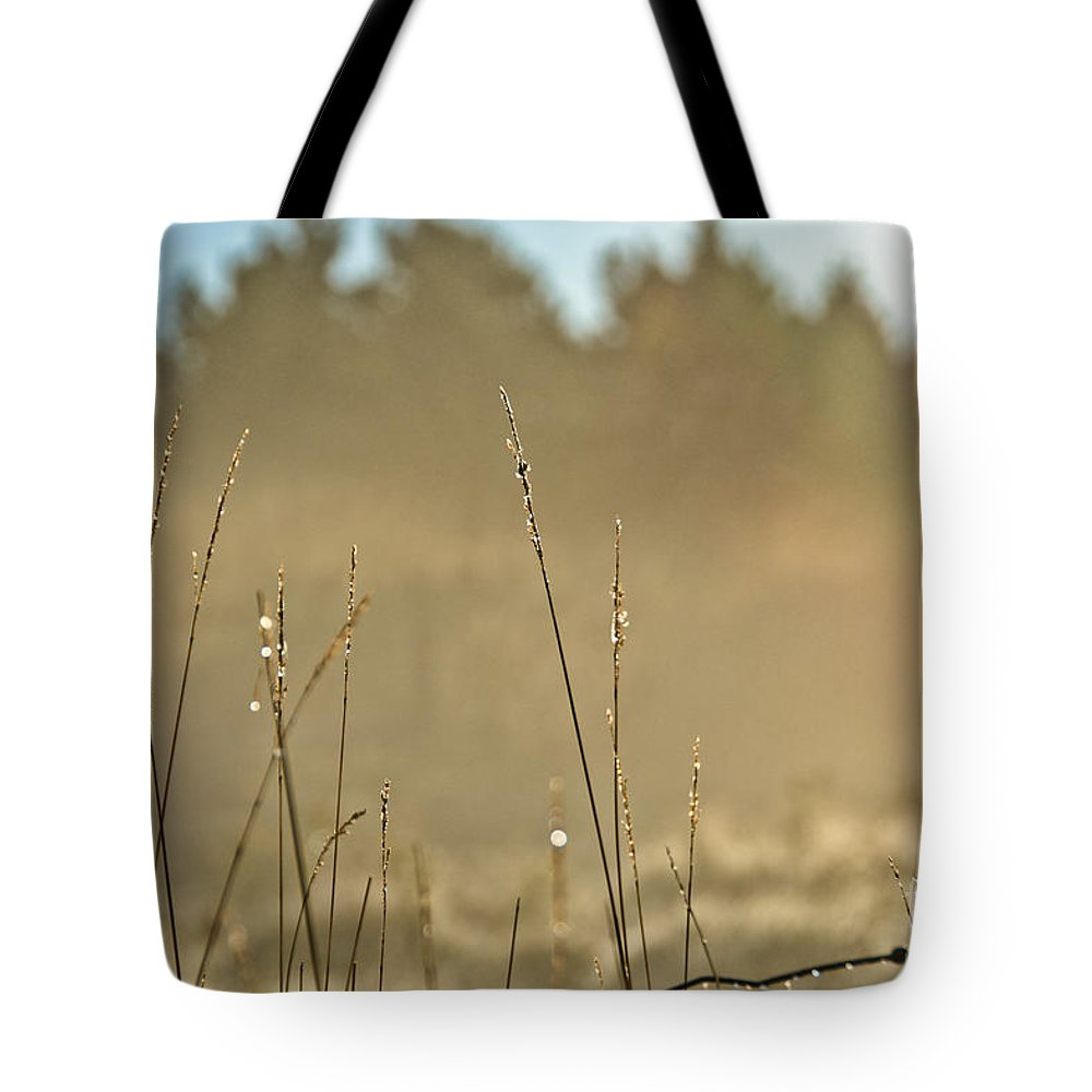 Tote Bag featuring the photograph Dew Fog And Grasses by Cheryl Baxter