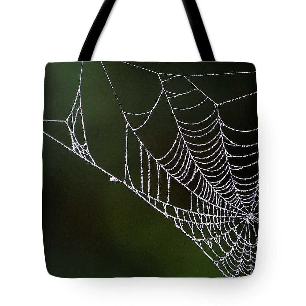 Web Tote Bag featuring the photograph Dew In Early Morning Light by Sherlyn Morefield Gregg