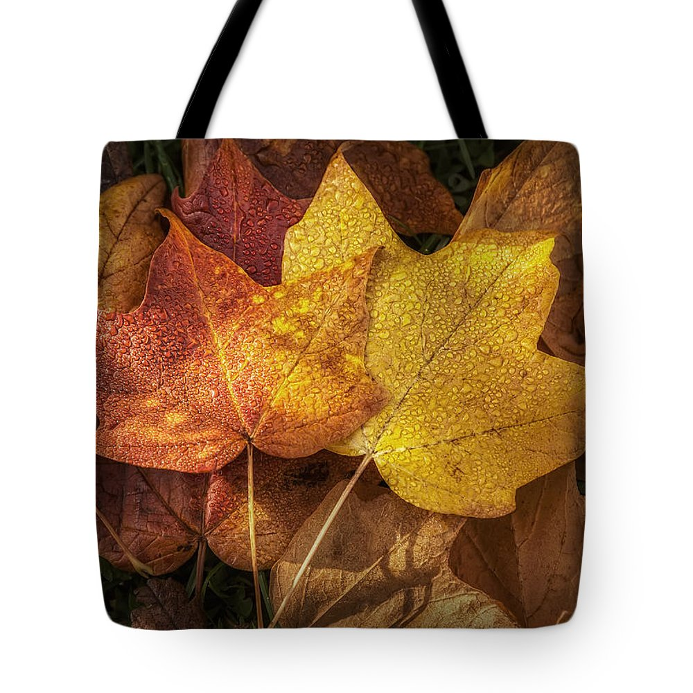 Leaf Tote Bag featuring the photograph Dew on Autumn Leaves by Scott Norris