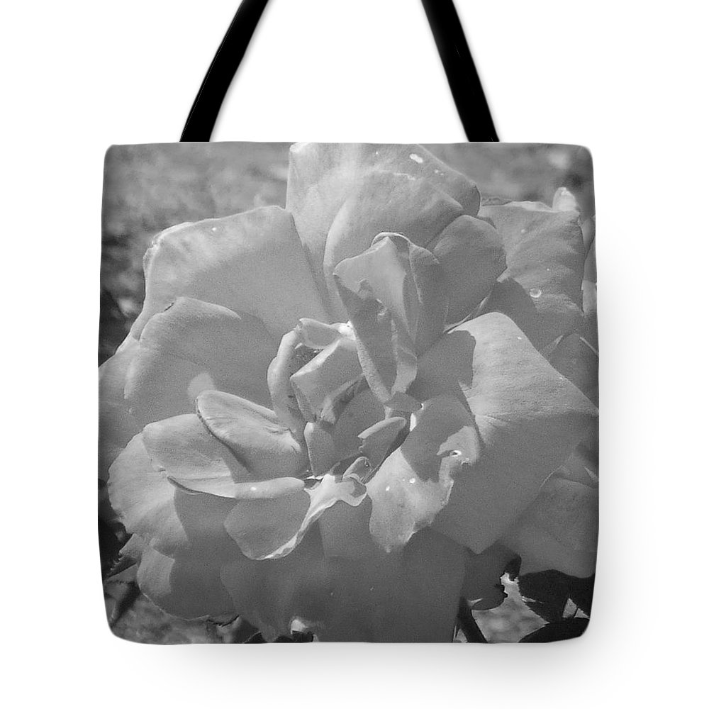Rose Tote Bag featuring the photograph Dew Rose by Pharris Art