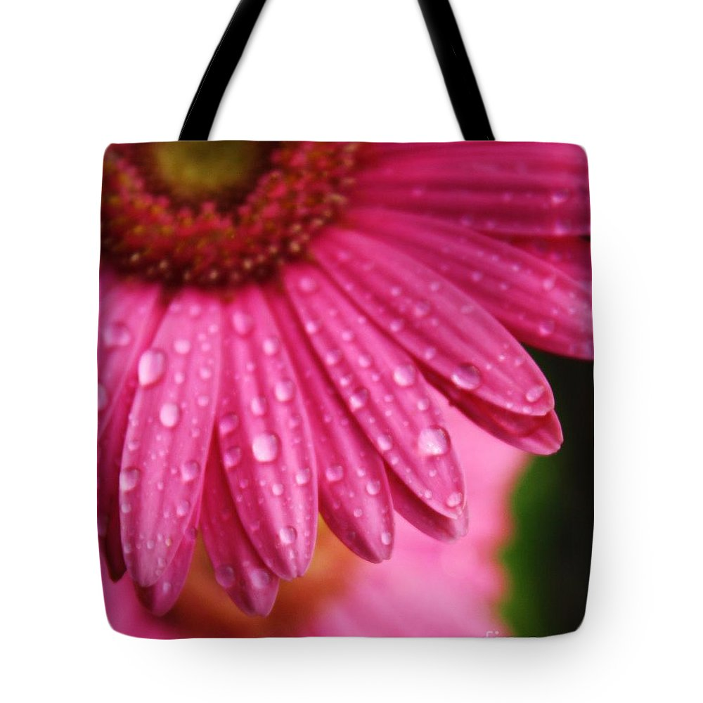 Daisy Tote Bag featuring the photograph Dewdrop Daisy by Tia Patton