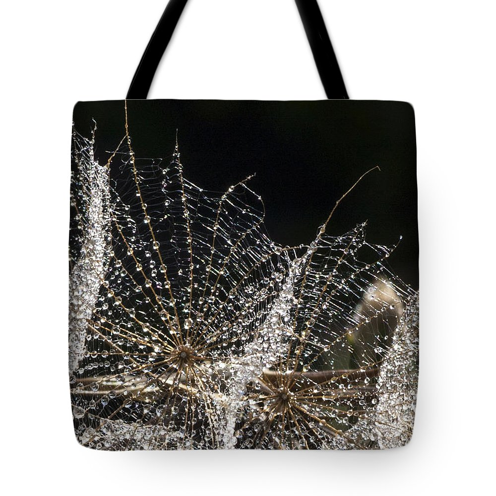 Dew Tote Bag featuring the photograph Dewy Seed Parachutes by Richard Thomas