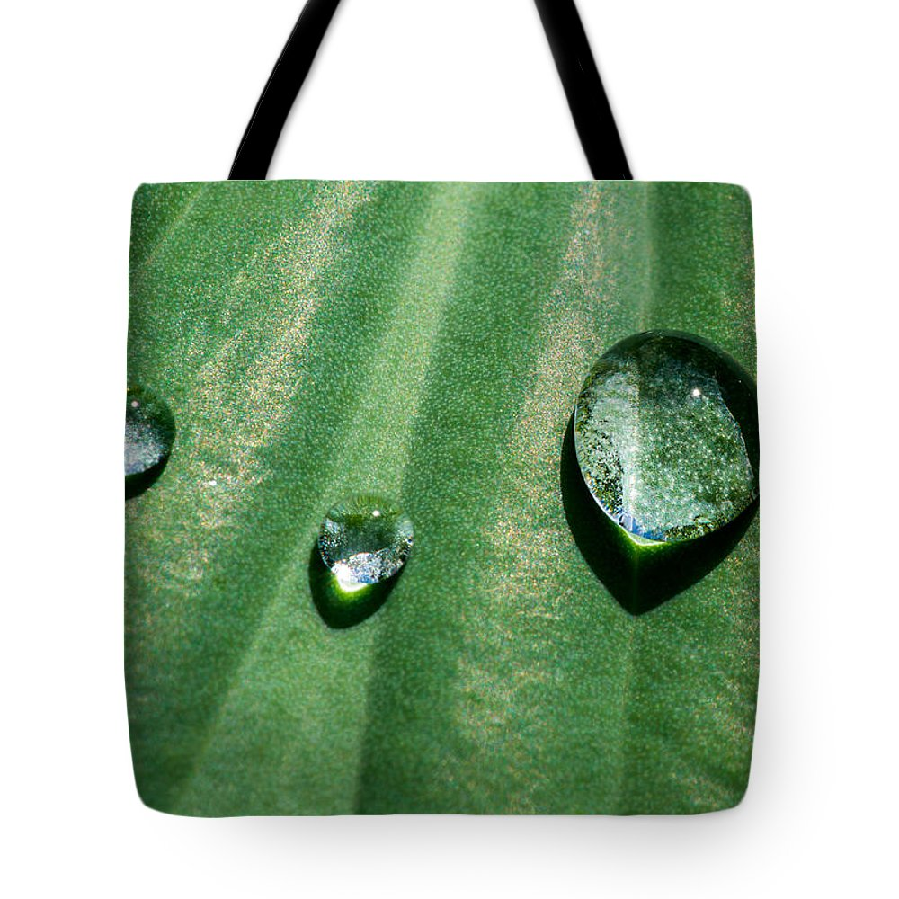 Agriculture Tote Bag featuring the photograph Diamonds Are Forever - Featured 3 by Alexander Senin