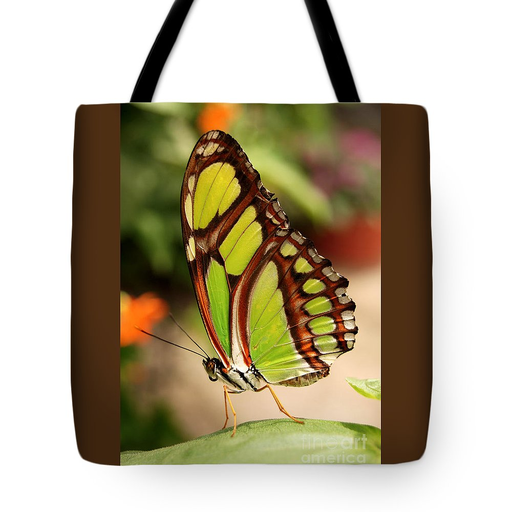 Longwing Butterfly Tote Bag featuring the digital art Dido Longwing Butterfly by Eva Kaufman