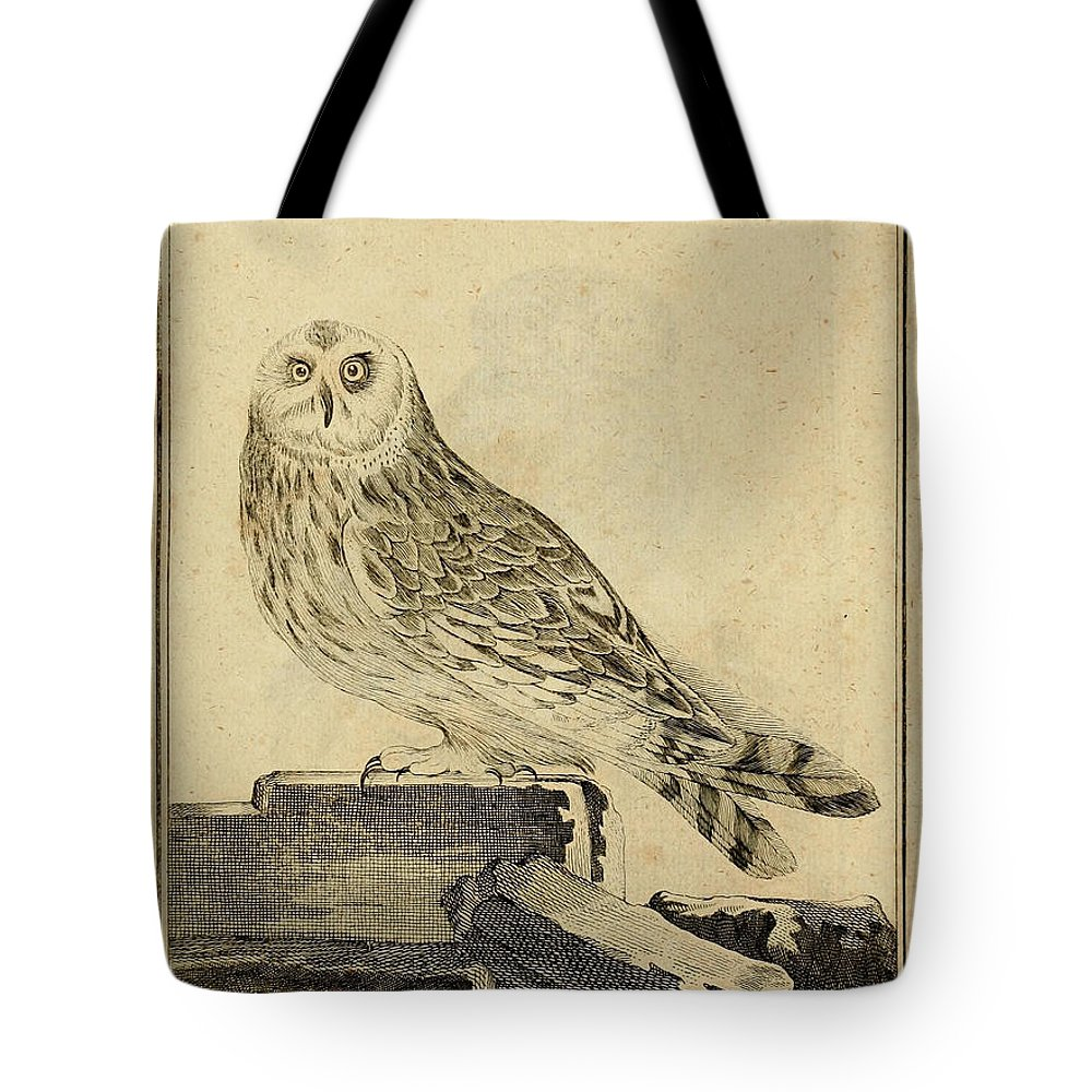Stein Tote Bag featuring the drawing Die Stein Eule Or Church Owl by Philip Ralley