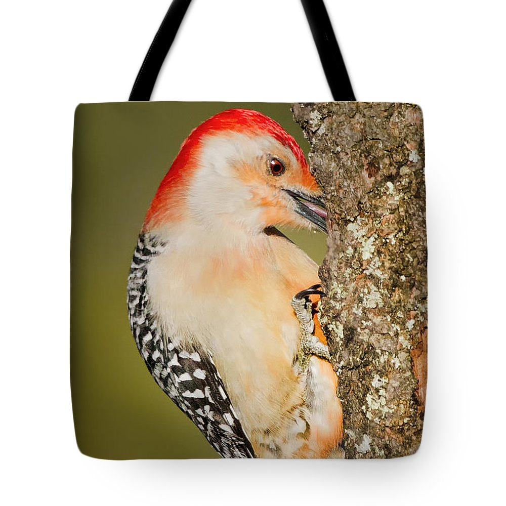 Woodpecker Tote Bag featuring the photograph Diggin by Bill Wakeley