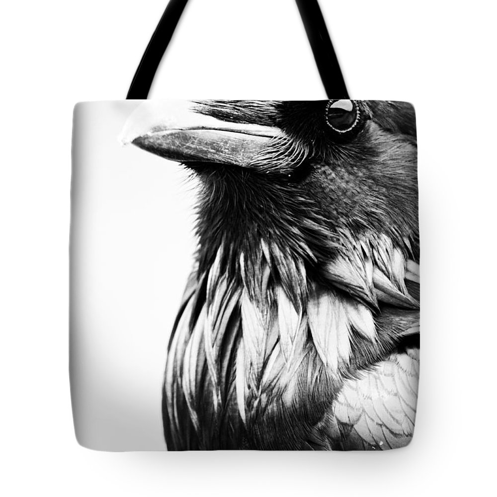 Bird Tote Bag featuring the photograph Direction Of The Blackbird by The Artist Project