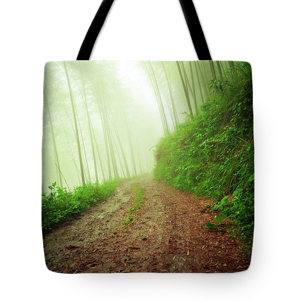 Extreme Terrain Tote Bag featuring the photograph Dirt Road Leading Through Foggy Forest by Fzant