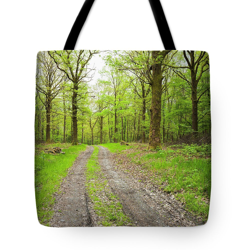 Scenics Tote Bag featuring the photograph Dirt Road Surrounded By Trees In by Mike Kemp Images