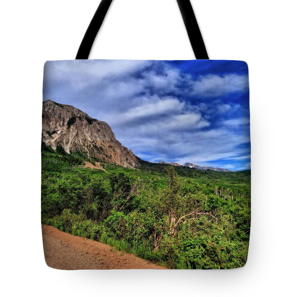 Dirt Roads In Colorado Tote Bag featuring the photograph Dirt Roads And Aspen Forest In Colorado by Dan Sproul