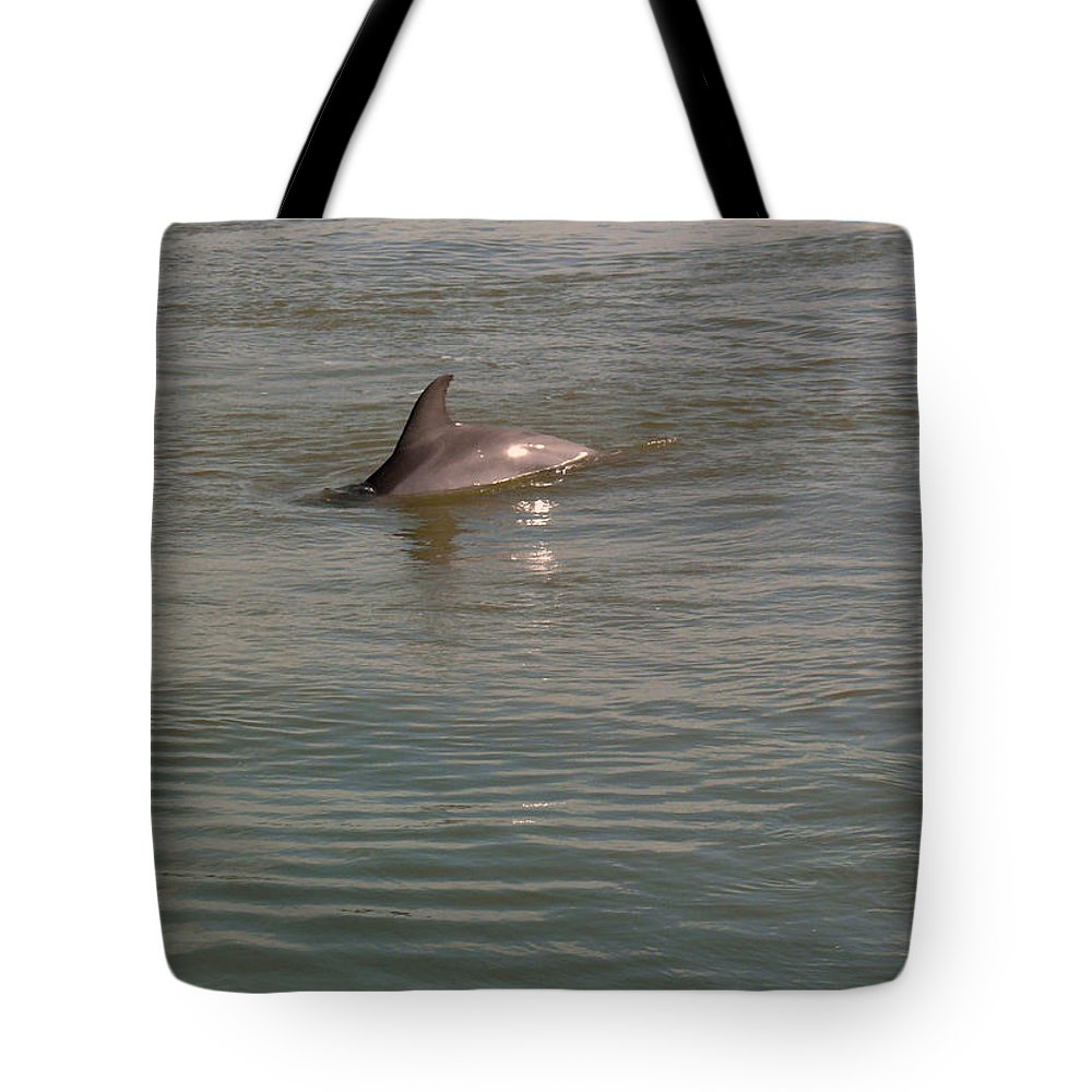 Dolphin Tote Bag featuring the photograph Diving Dolphin by Robert Brown