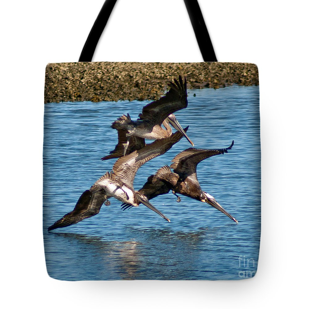 Pelicans Tote Bag featuring the photograph Diving Pelicans by Stephen Whalen