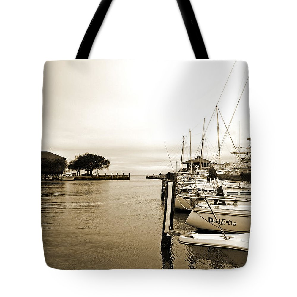 Landscape Tote Bag featuring the photograph Docked by Earl Johnson