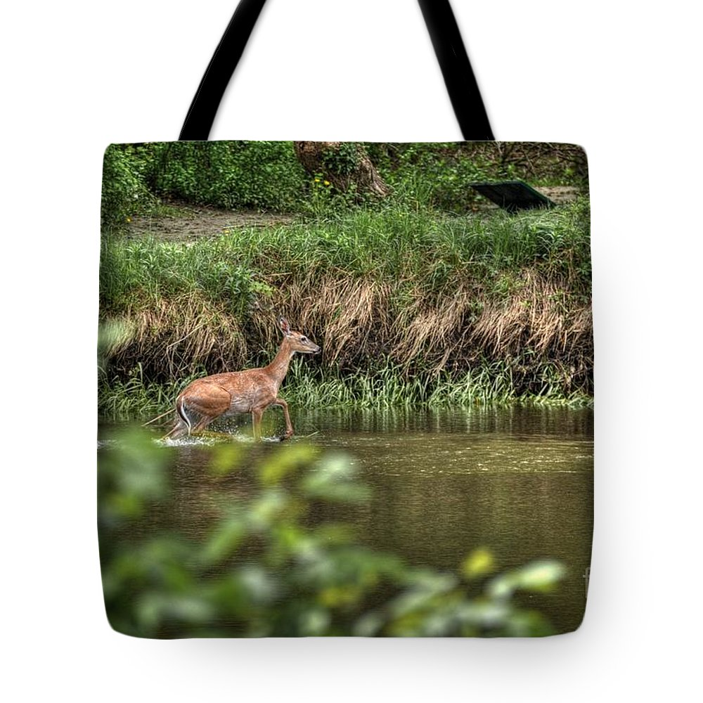 Doe Tote Bag featuring the photograph Doe Crossing The River by M Dale