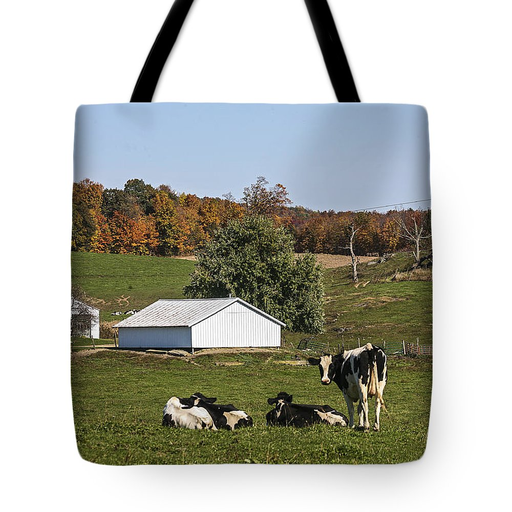 Fall Tote Bag featuring the photograph Does This Make My Butt Look Fat? by Eric Swan