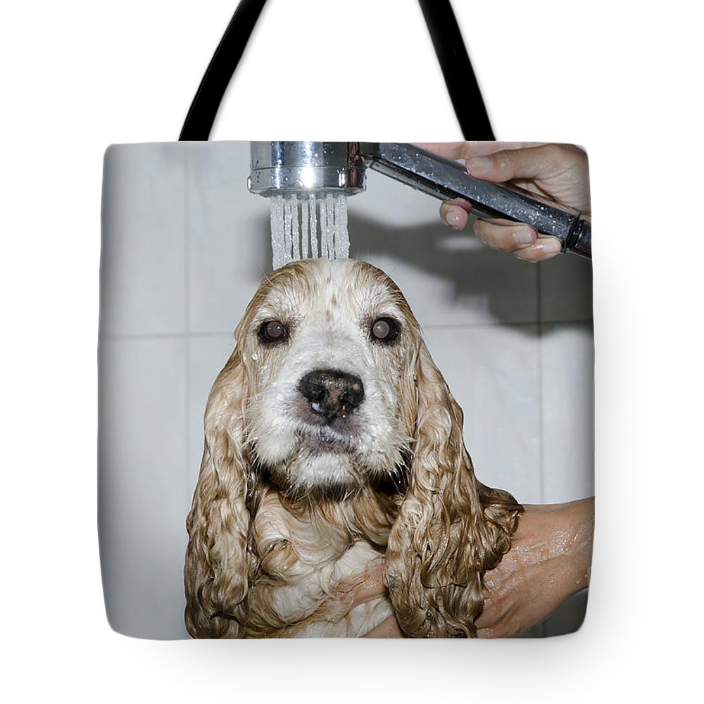Dog Tote Bag featuring the photograph Dog Taking A Shower by Mats Silvan