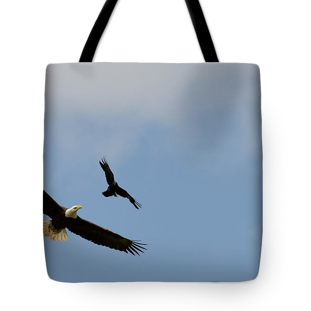 Bald Eagle Tote Bag featuring the photograph Dogfight by Ian Ashbaugh
